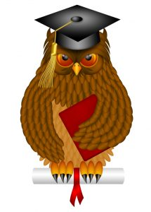 Wise Old Owl with Feathers and Claws Wearing Graduation Cap Holding Diploma BookIllustration Isolated on White Background