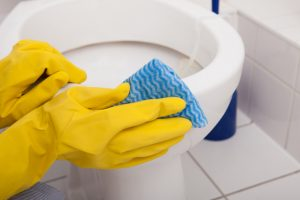Close-up Of A Person's Hand Wearing Gloves Cleaning Toilet