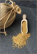 mustard_seed_faith